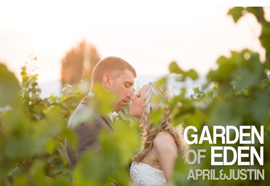 Apirl And Justin Wedding at Eden Valley Orchards